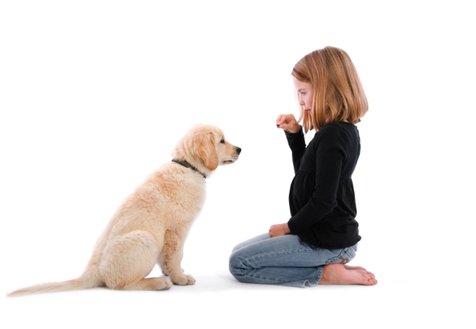 child-training-dog-685x474.jpg