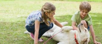 Crianca e animal no jardim 2 red