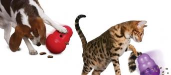3 Dicas para uma condicao corporal saudavel - Imagem de destaque