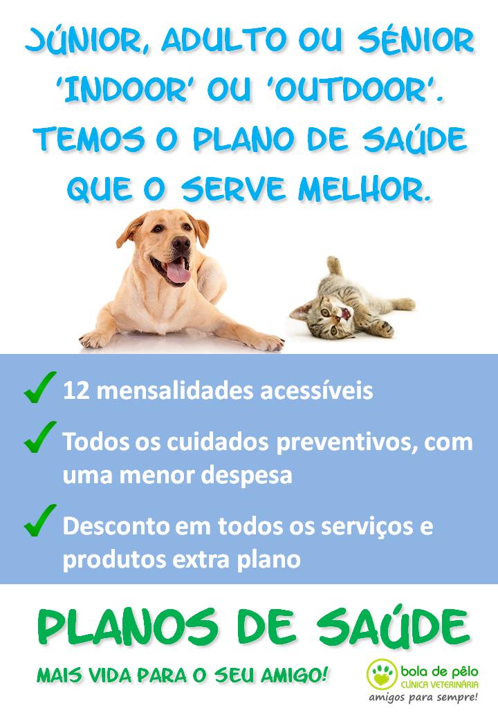 planos-de-saude-clinica-veterinaria-bola-de-pelo